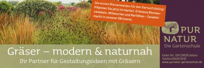 Gräser_180x60_2021 (1)