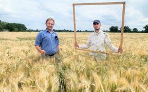 Dr. Stefan Meyer und Johannes Quente von der Georg-August Universität Göttingen führen die wissenschaftlichen Untersuchungen zur Ackerbegleitflora durch. Foto: BVNON